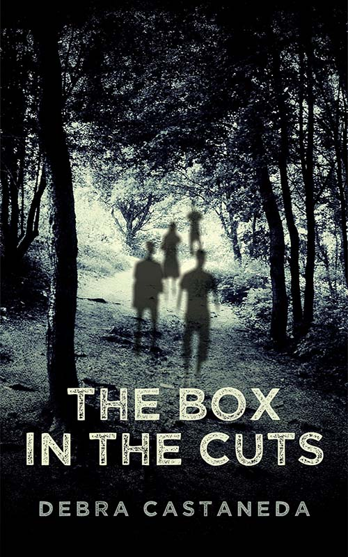 The Box in The Cuts